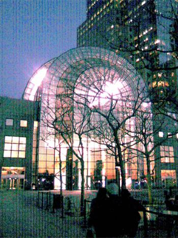 Wintergarden at night